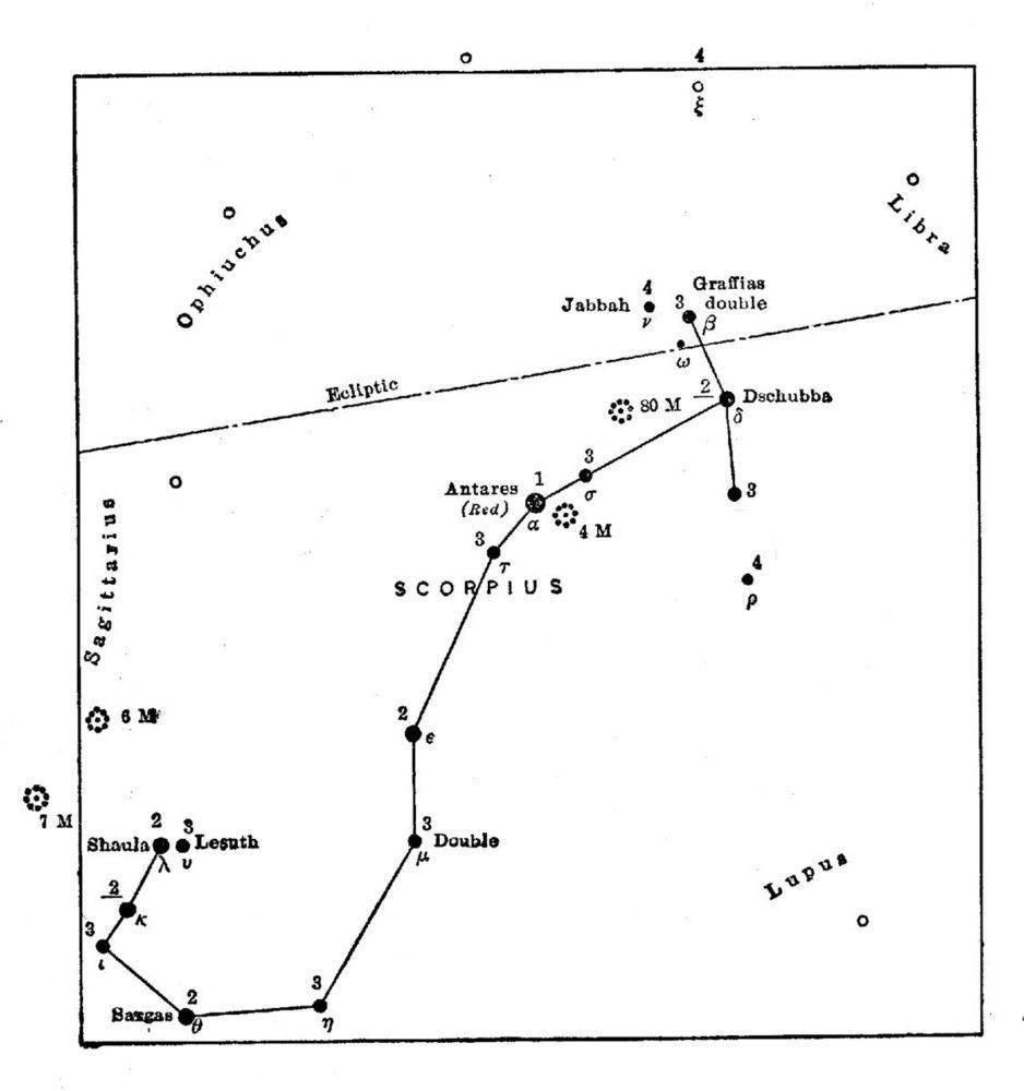 year constellation - Google Search