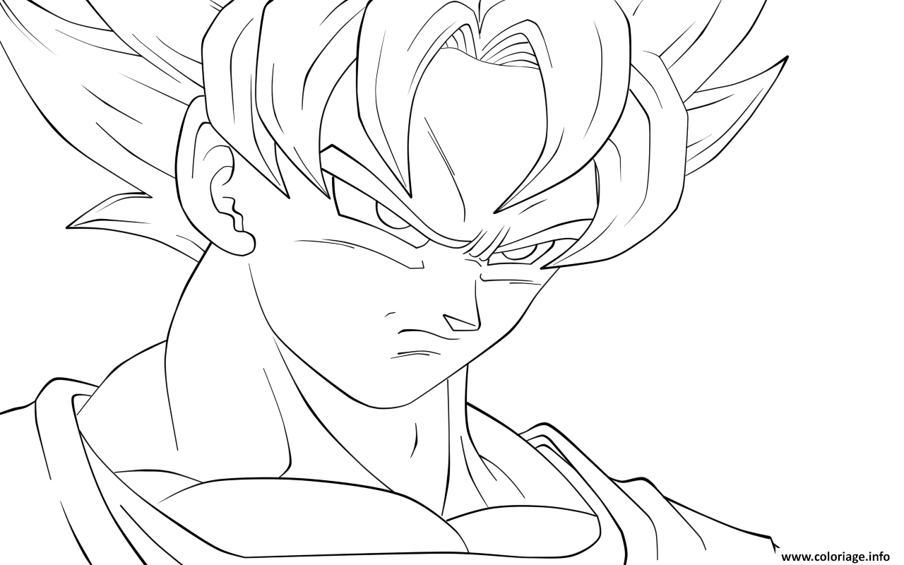 Dessin Dragon Ball Z 198 Coloriage Gratuit à Imprimer My Coloring