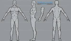image result for t pose reference topology ref pinterest
