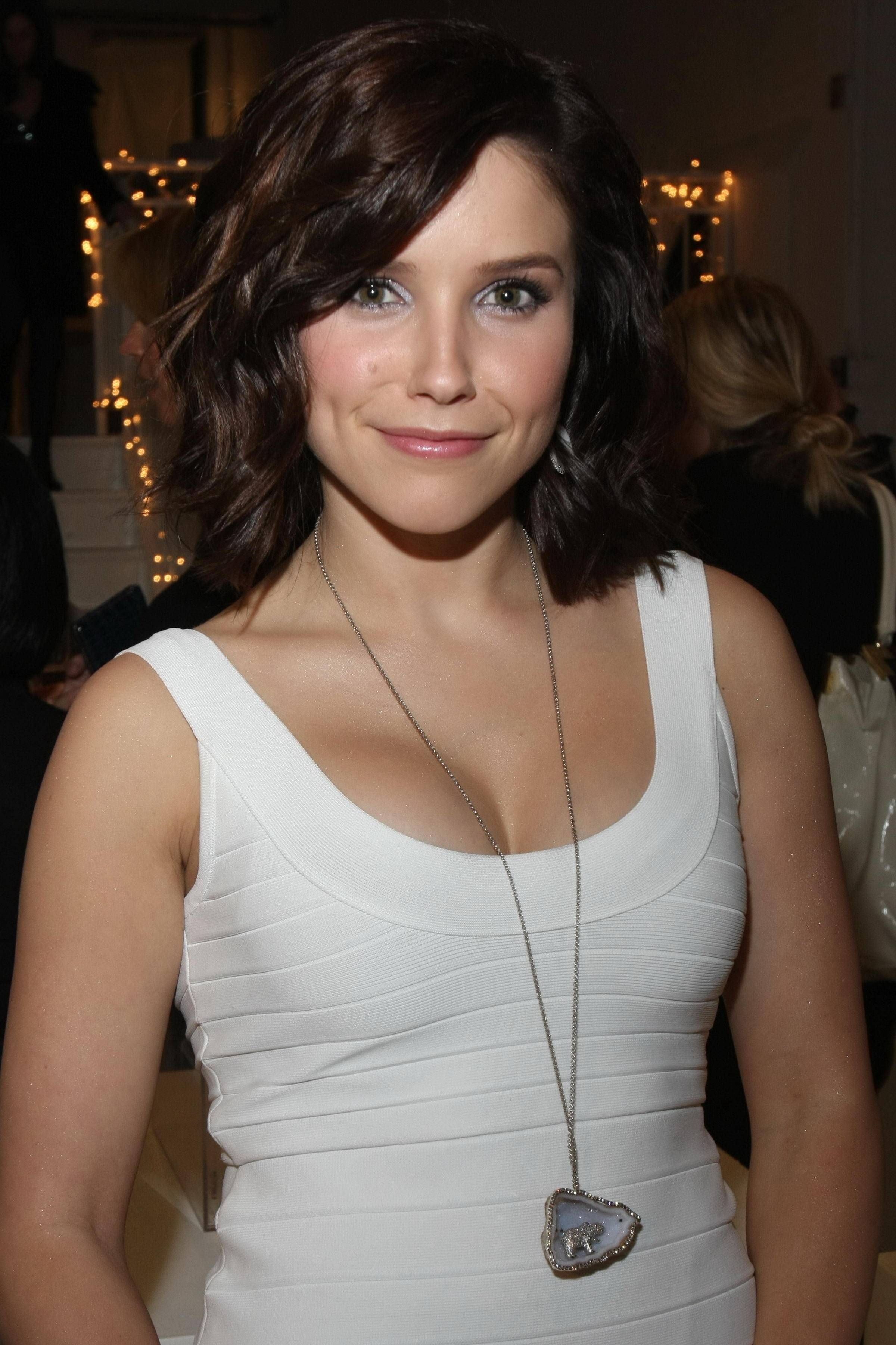 Sophia Bush nude (58 pictures), pics Topless, iCloud, butt 2015