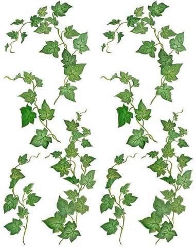 Identifying Trees and Their Leaves | Vine-illustration ...