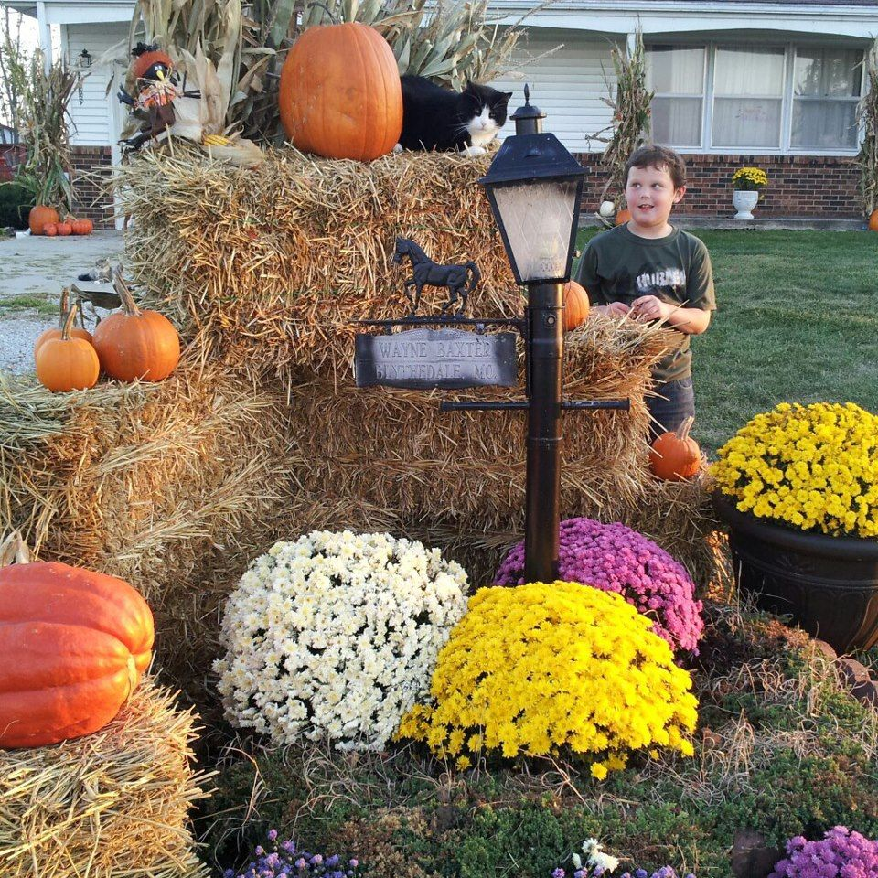 Outdoor fall decorating ideas yard - How To Decorate Your Yard For Fall With Mums Cornstalks Pumpkins Gourds