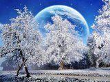 3d winter | 2560x1920