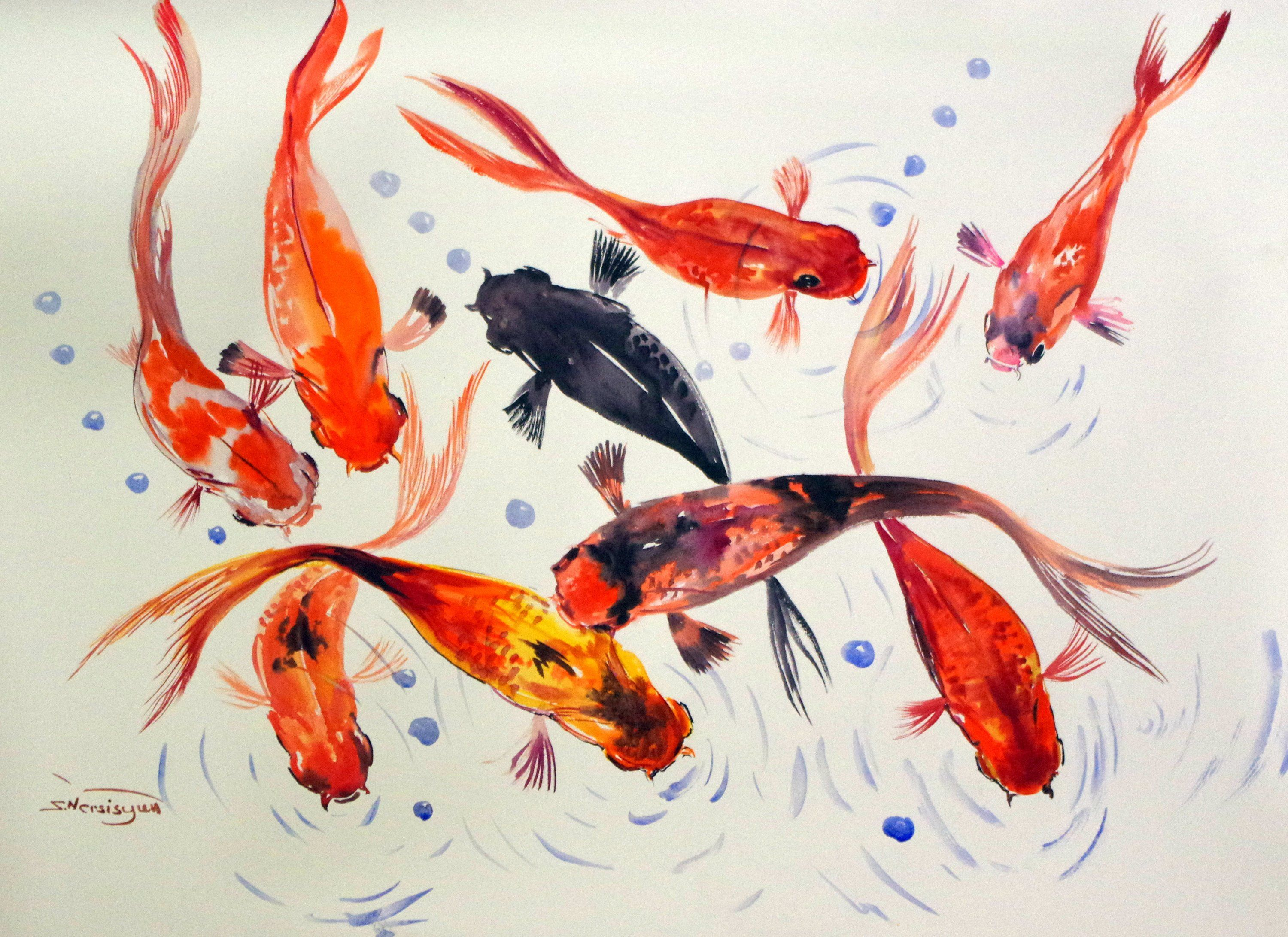9 Koi Fish Large Original Large Watercolor Painting 40 X 30 In