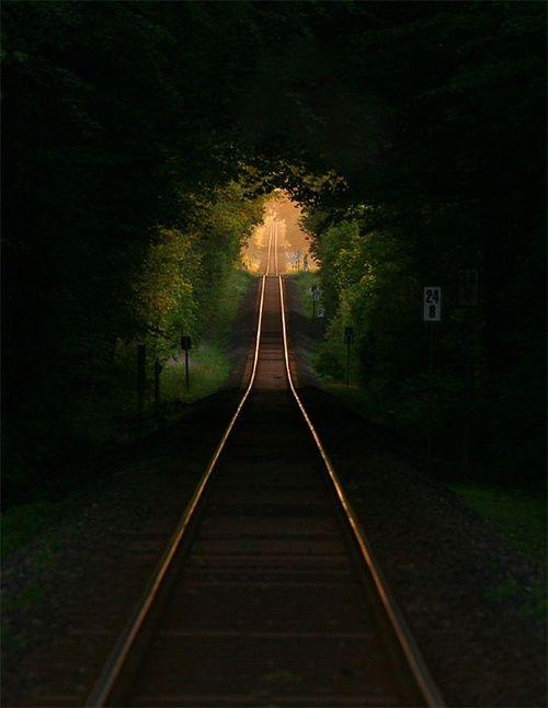 Railroad Tree Tunnel, France    photo via xtc
