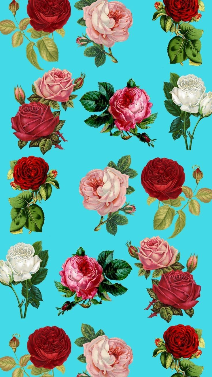 Pin By Queensociety On Color Frequency Floral Wallpaper