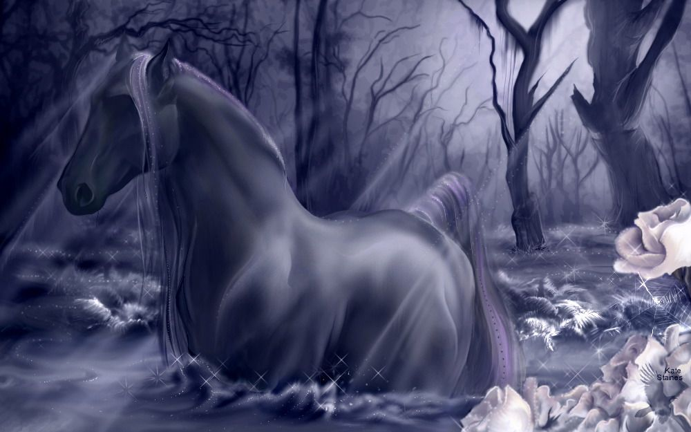 awesome looking horses | ... layout native horse click to see this cool native horse myspace layout