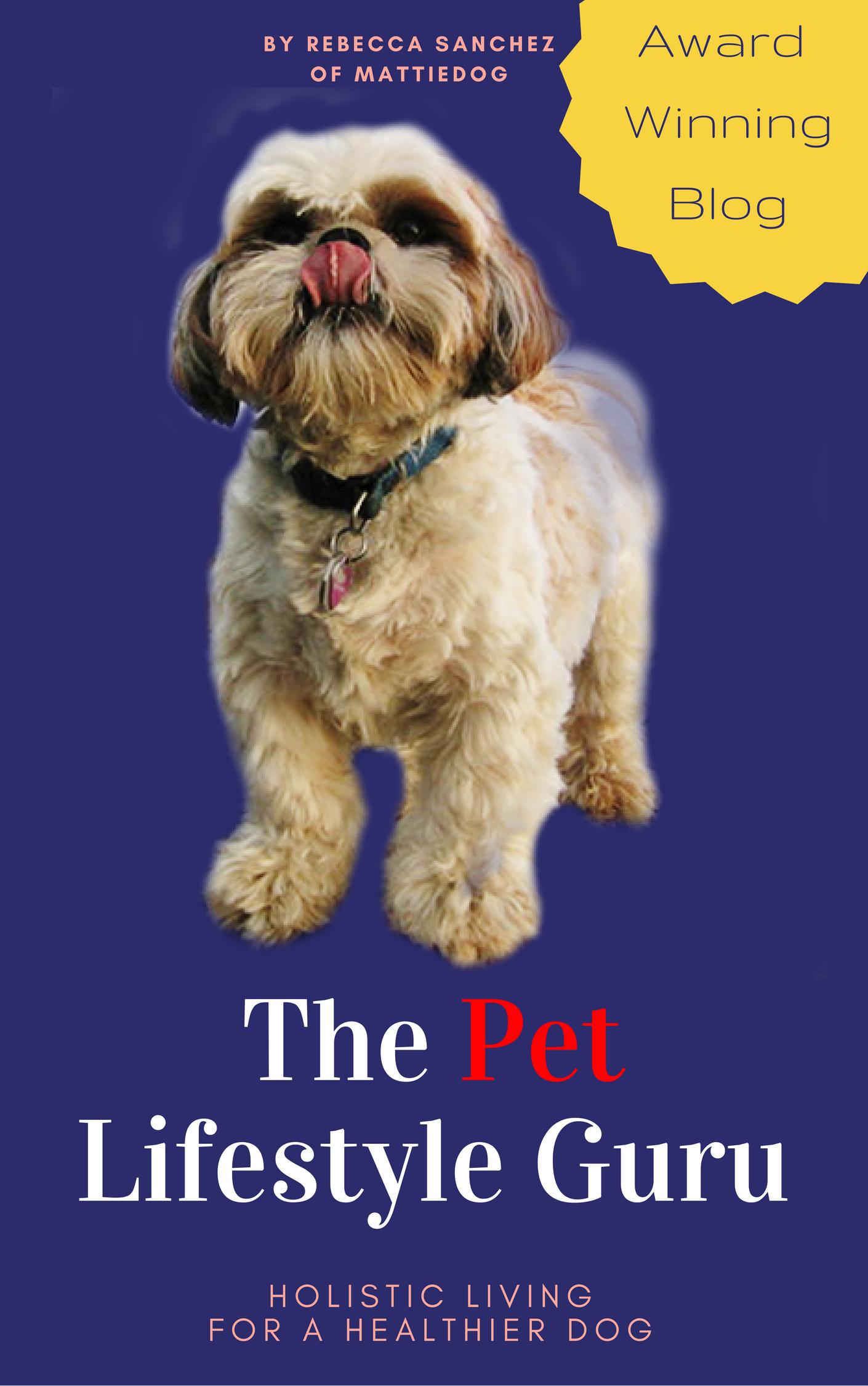 Mattiedog S Blog Animal Rescue Fundraising Writing Author Holistic Dog Healthy Holistic Living Healthy Dogs
