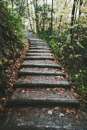 Photo of Hiking in the Smoky Mountains is beautiful all year around!  Hiking in the Smoky…