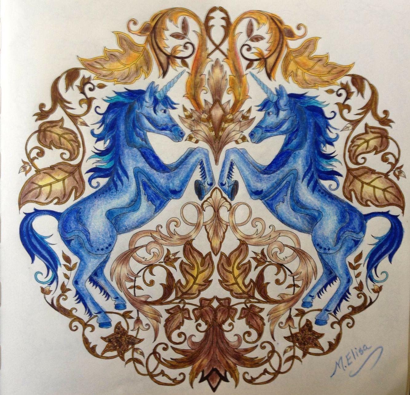 Johanna Basford Coloring Book Unicorns Enchanted Forest Unicornios Floresta Encantada