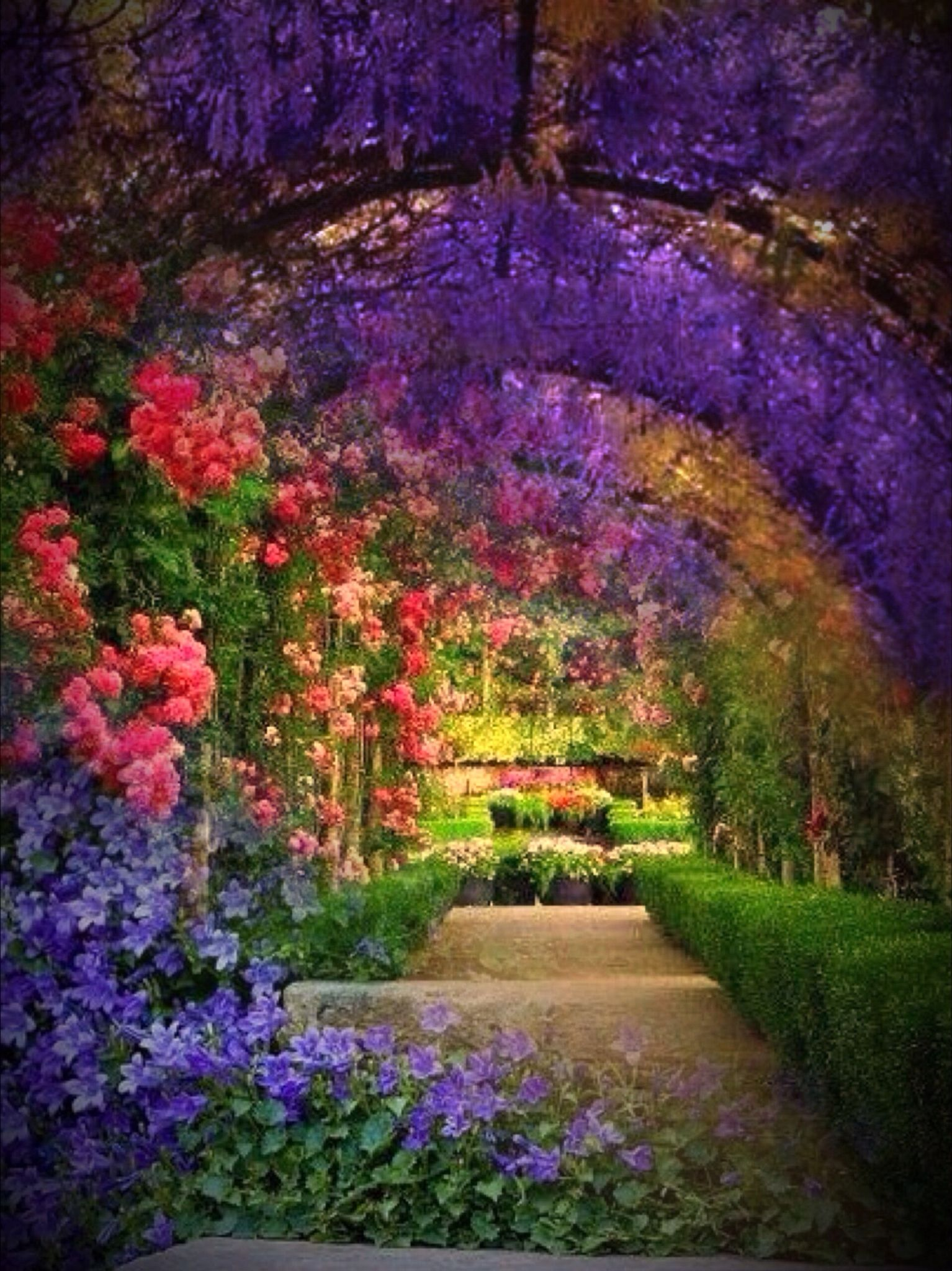 If I could have my dream garden this is the archway I ... on My Dream Patio  id=82189