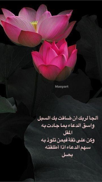 Pin By Masyart On كلمات راقية Flowers Rose Ted Baker Icon Bag