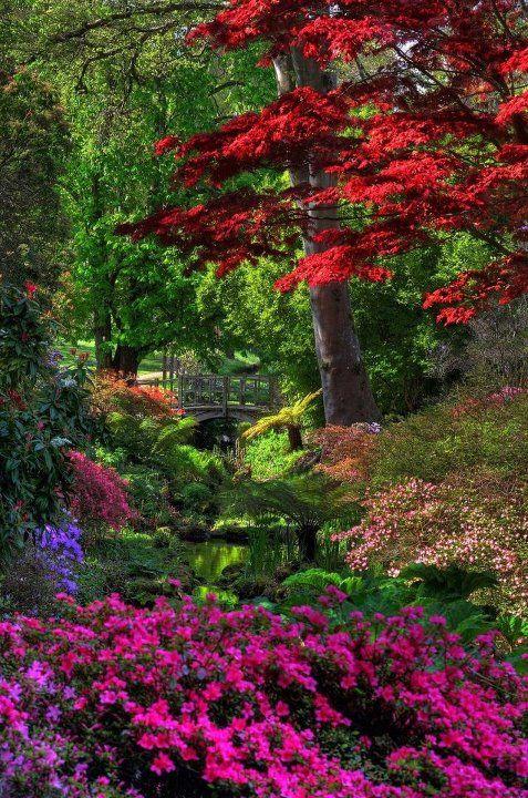 Jardin japonais jardins du monde pinterest jardins for Pin jardin japonais