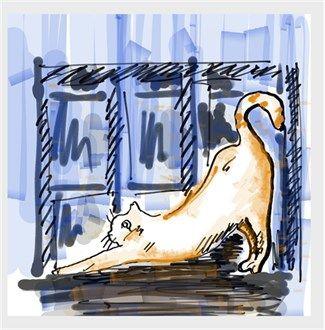 Orange cat Kendin Tasarla - Kanvas Tablo 25x25cm Kare