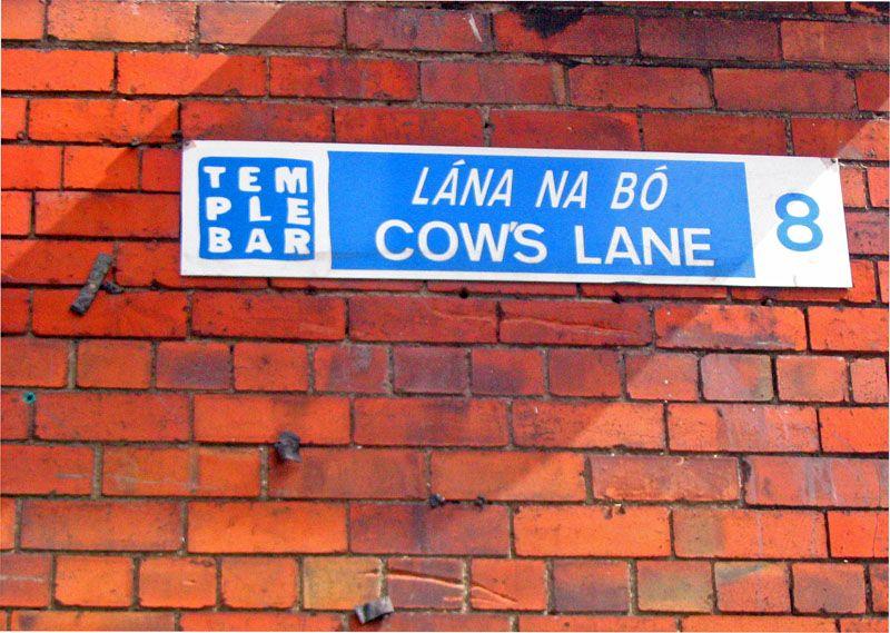 Cow's Lane Dublin. www.clickacourier.ie Dublin Street