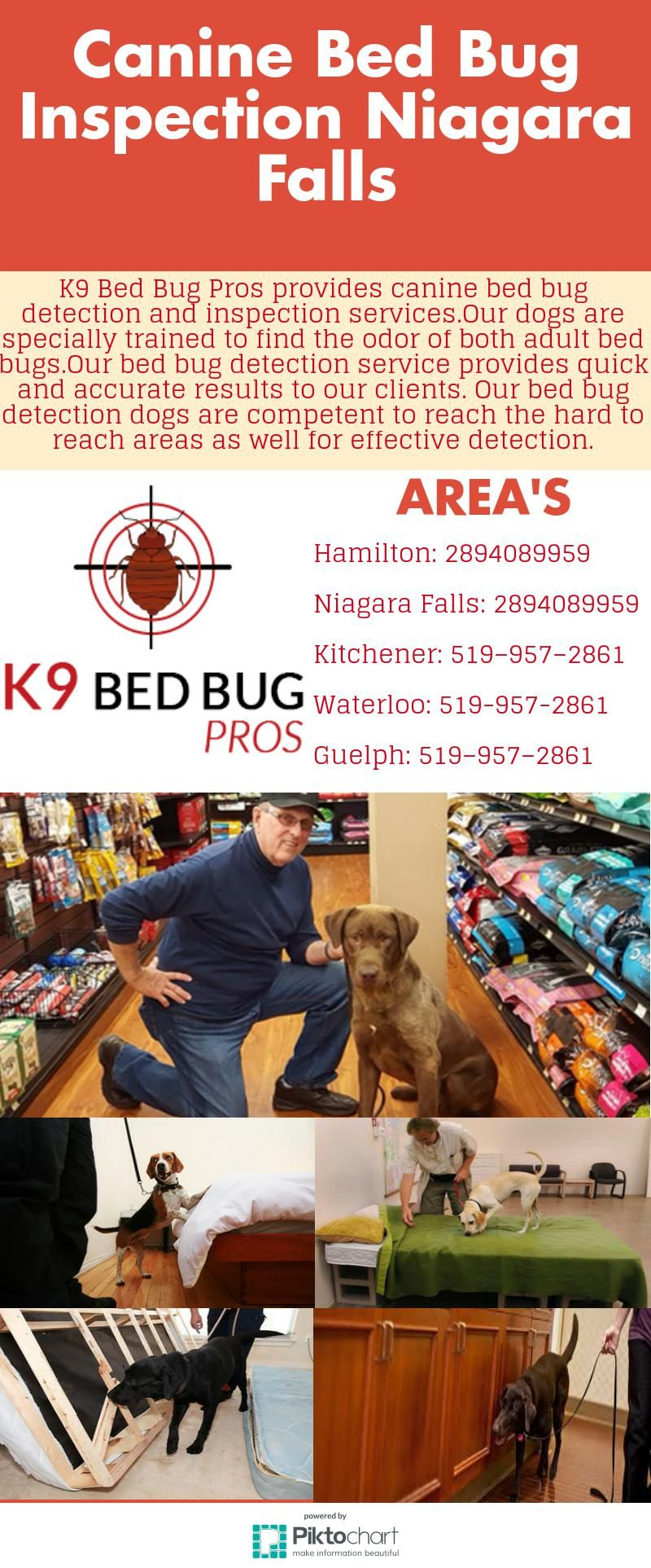 K9 Bed Bug Pros provides canine bed bug detection and