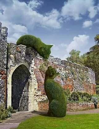 Un giardiniere di Torino ha vinto in Francia il primo premio per quest'opera, non la trovate stupenda?