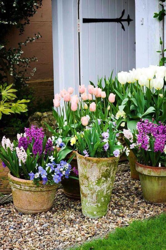 Moments Ogród Pinterest Wohnungsdeko Frühling Und Garten