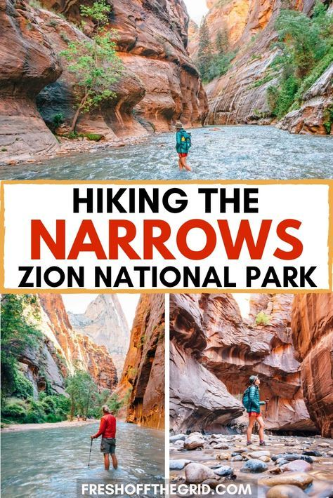Photo of The Narrows hike in Zion National Park is a unique and incredible hike that you …