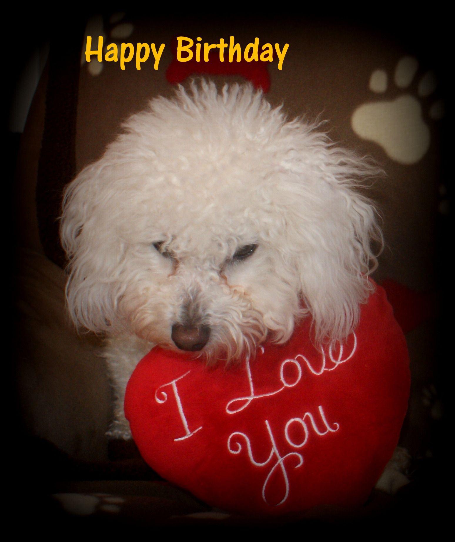 youwall happy birthday - photo #35