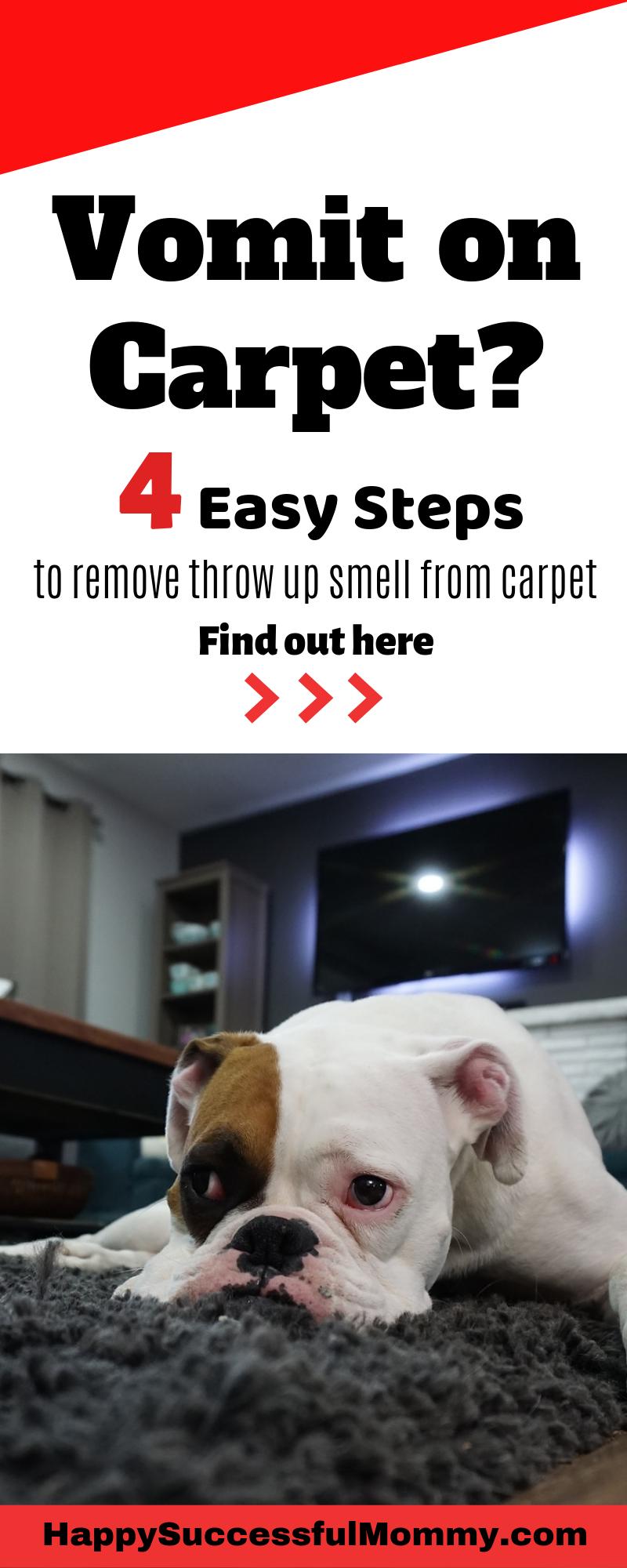 Vomit Smell In Carpet Carpet Odor Remover How To Clean Carpet Carpet Odors