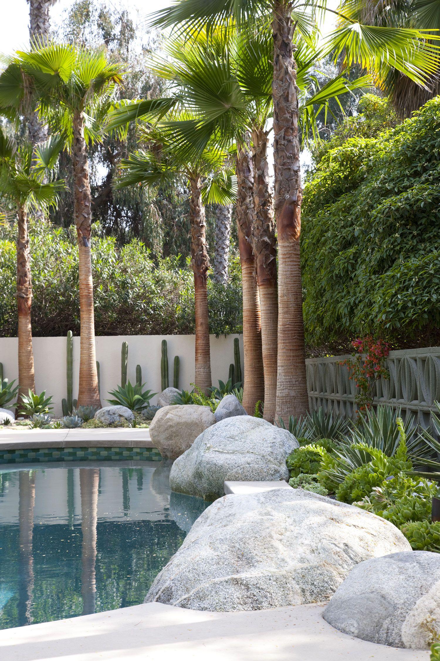 Gabriela Yariv Landscape Design Residential Garden In Homage To Albert Frey Pasadena