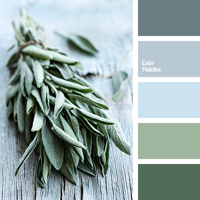 Image Result For Color Palette Light Blue And Light Green