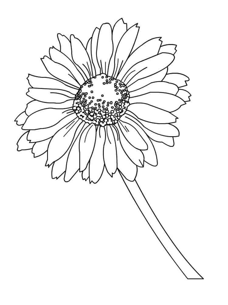 Daisy Flower Coloring Pages. Download And Print Daisy Flower Coloring Pages