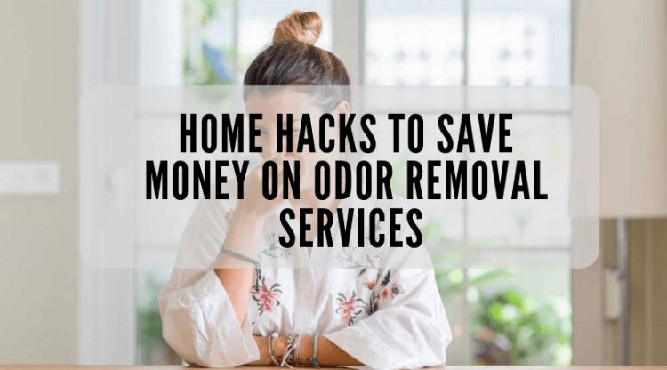 Home hacks to save money on odor removal services  No one can deny that puppies are adorable, but people don't relish their tell-scents. They play, run on and around the carpets. Moreover, they are always ecstatic when you return home. Nevertheless, having a puppy at home can create a total mess of dog urine, odor, and hair. Moreover dealing with pet-related issues can be a daunting task.