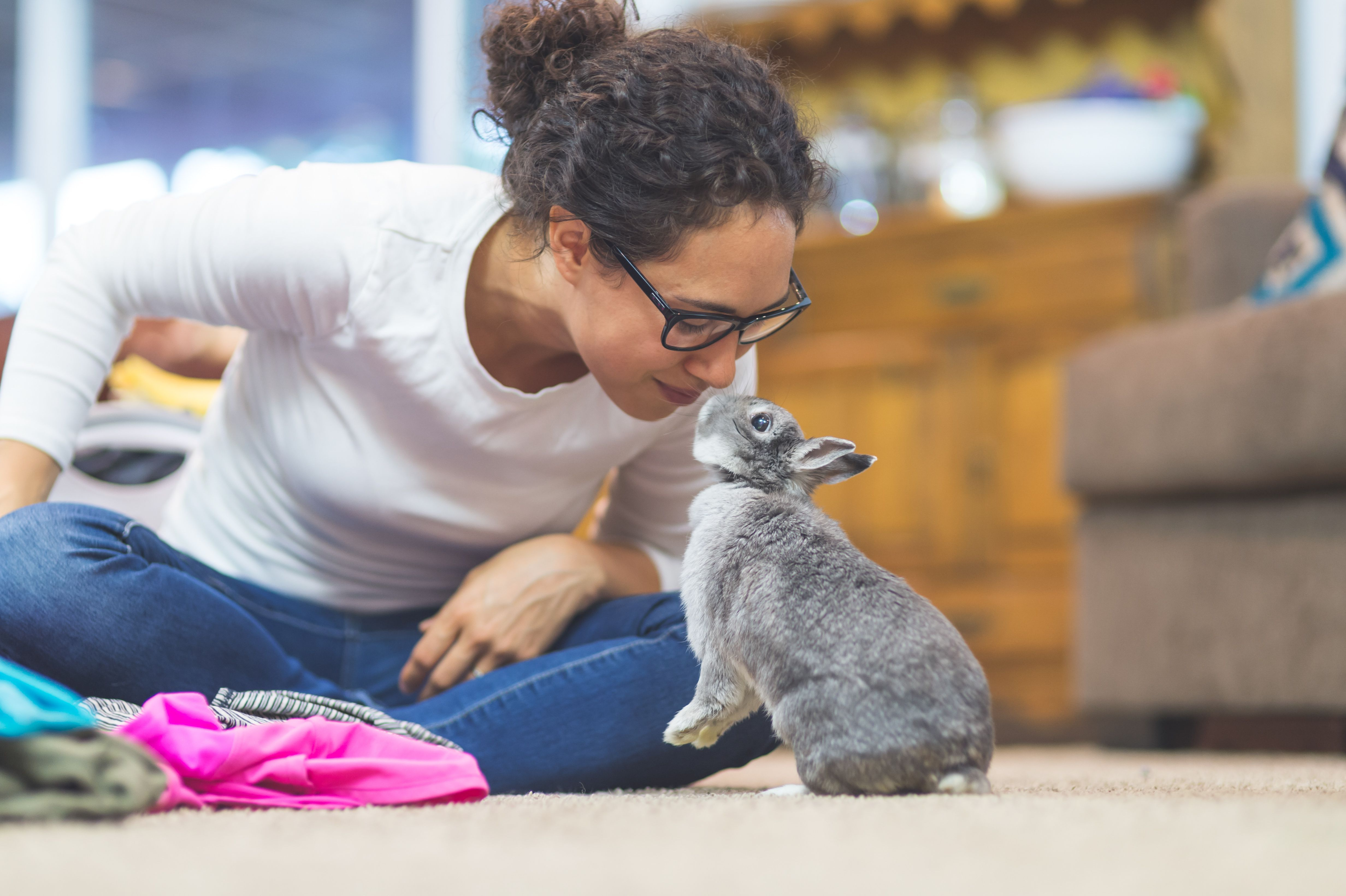 How you can litter train your rabbit litter training
