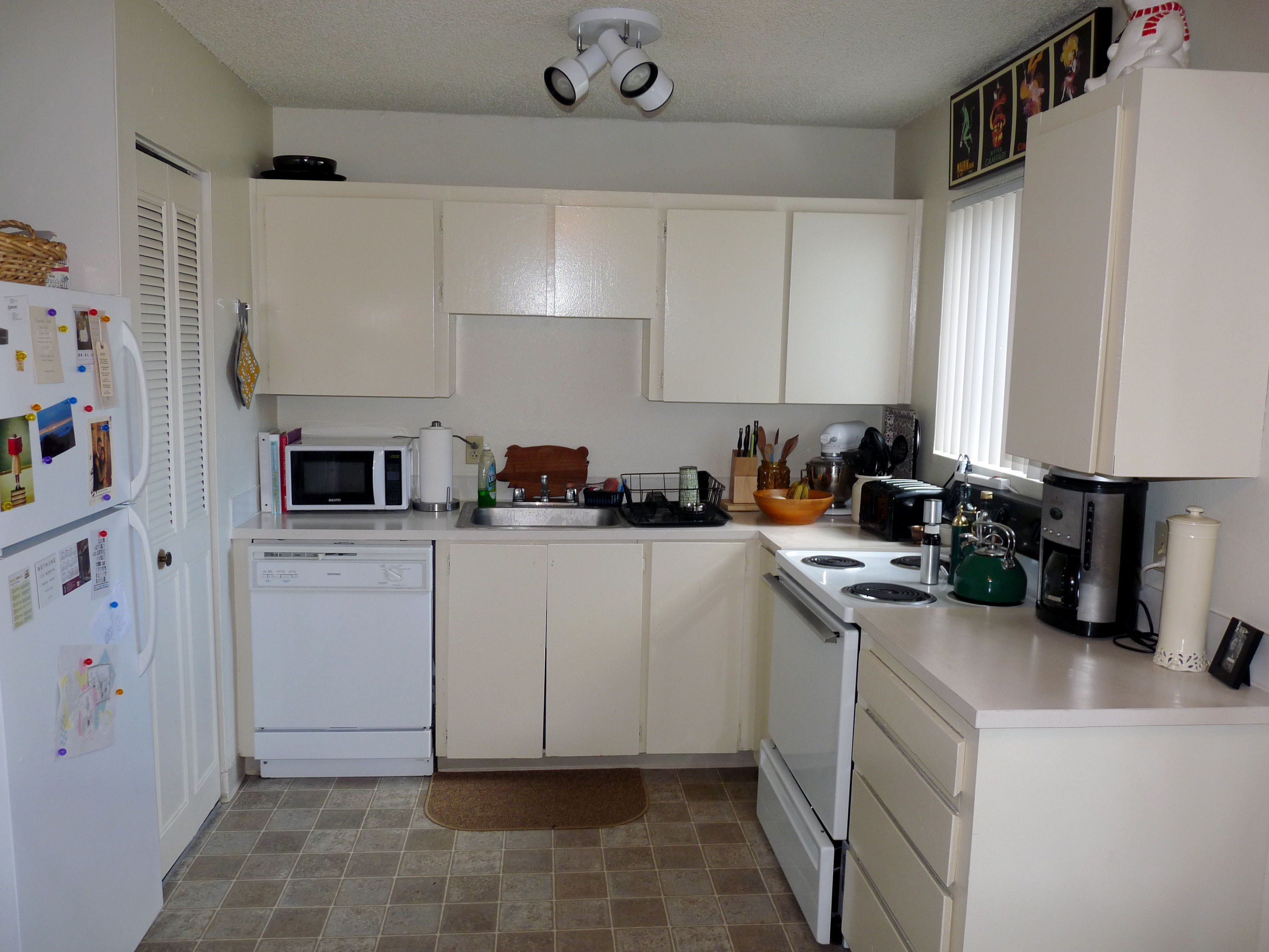 Pretty Picture Of Kitchen Apartment Rental Decorating Ideas Catpillowco