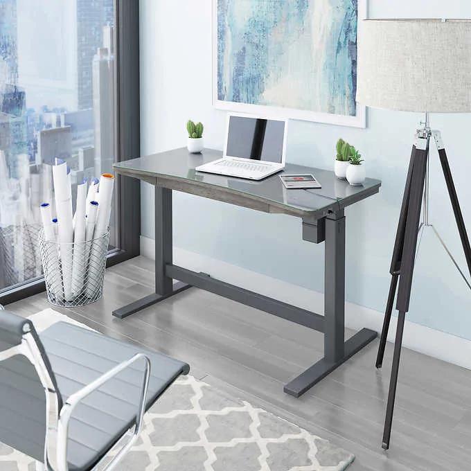 Tresanti 55 Adjustable Height Desk Gray In 2020 Adjustable Height Desk Desk Home