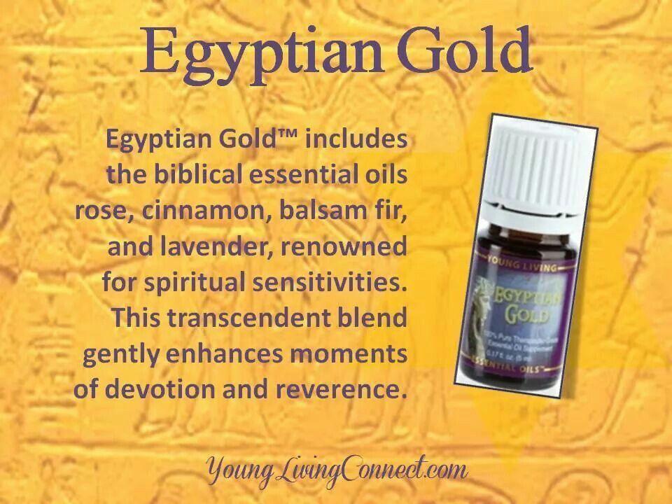 Egyptian Gold BioOilAcne Bio oil stretch marks, Rose
