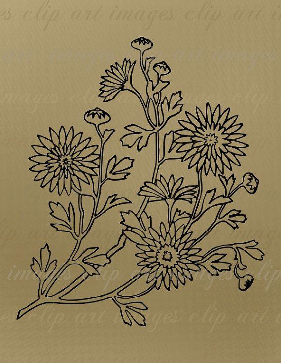 double daisies flower clip art