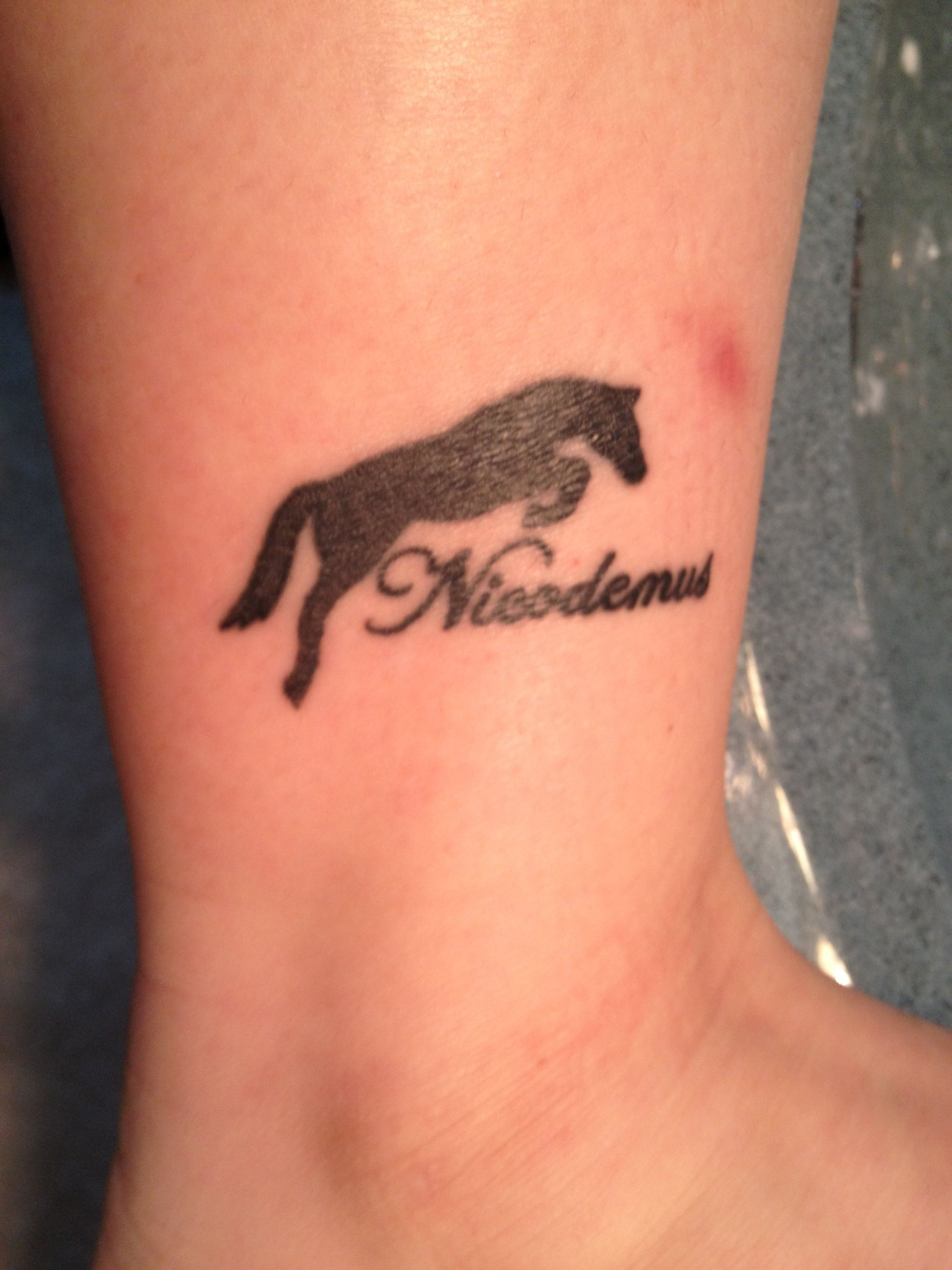 Horse silhouette tattoo with my horses name in script ink horse silhouette tattoo with my horses name in script buycottarizona Images