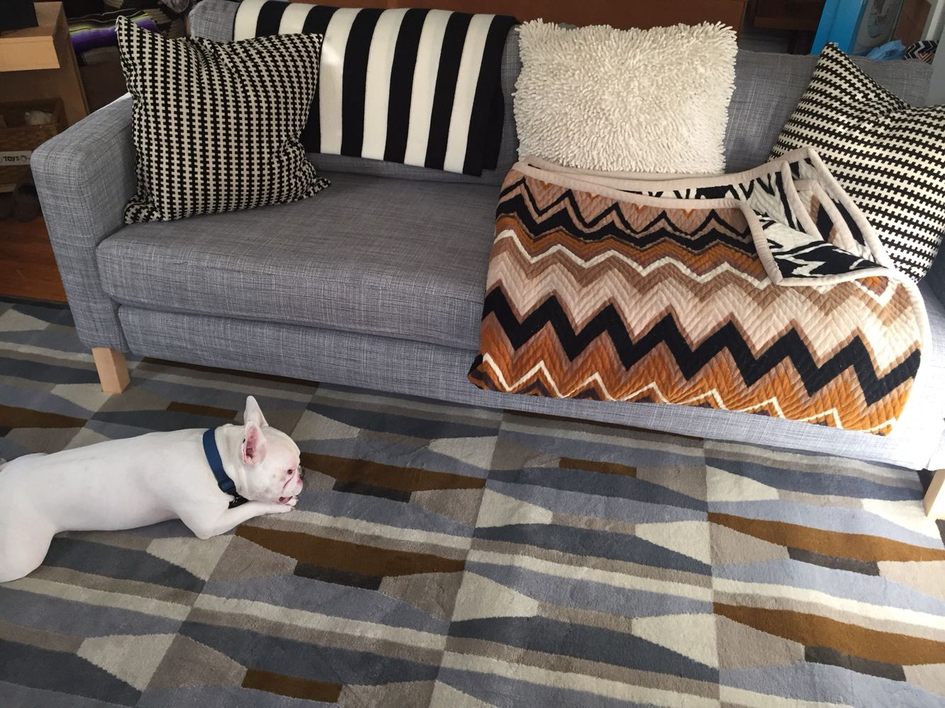 IKEA Karlstad | IKEA Vidstrup Rug | Missoni For Target Throw Blanket | Our  French Bulldog