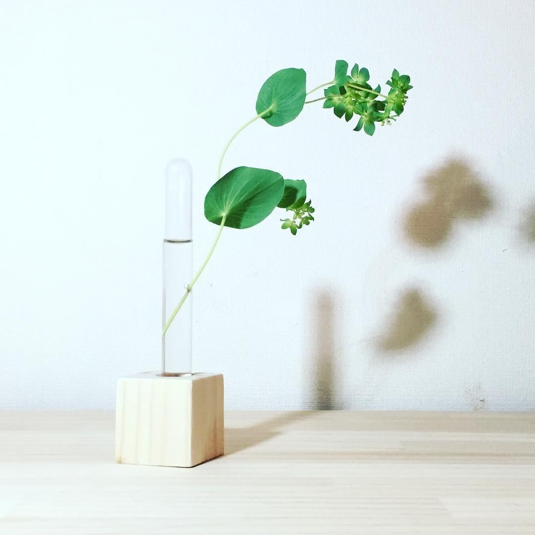 Lovely Vase Without Water Leakage