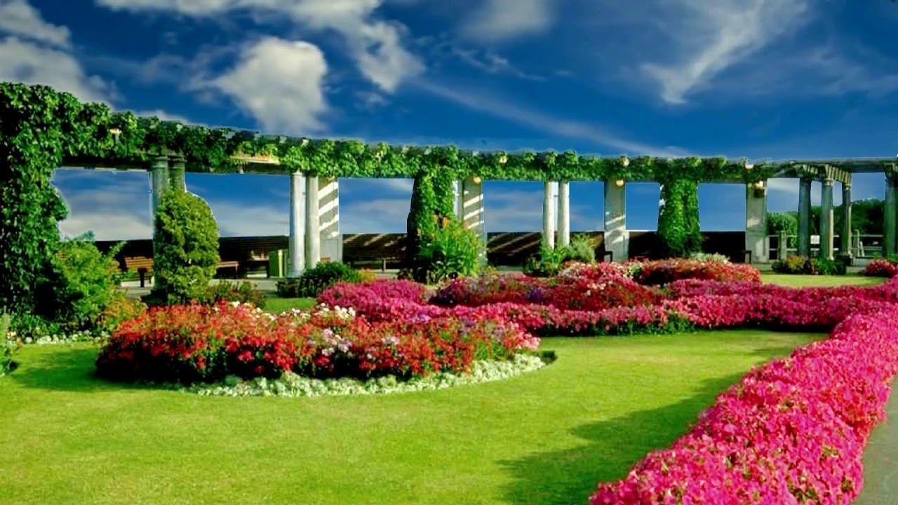 Flower Garden Background Video Royalty Free Landscape Video 391 Flower Garden Flower Background Wallpaper Landscape