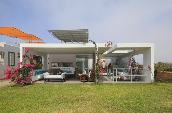 Diseño de casa de una planta con sótano y azotea con piscina, lineas