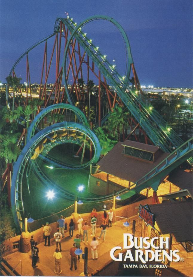 If This Was Your 6th Grade Field Trip. Busch Gardens Tampa, Fl