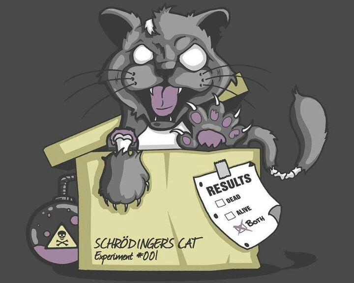 schrodinger s cat zombie