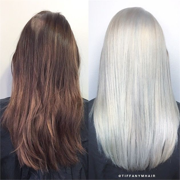 Box Brunette To Solid Platinum In 6 Hours Box Hair Dye Boxed Hair Color Silver Hair Color