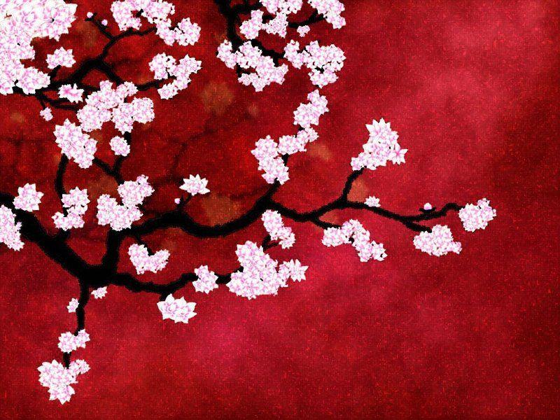 Koyo: Autumn Leaves in Japan | oh my omiyage