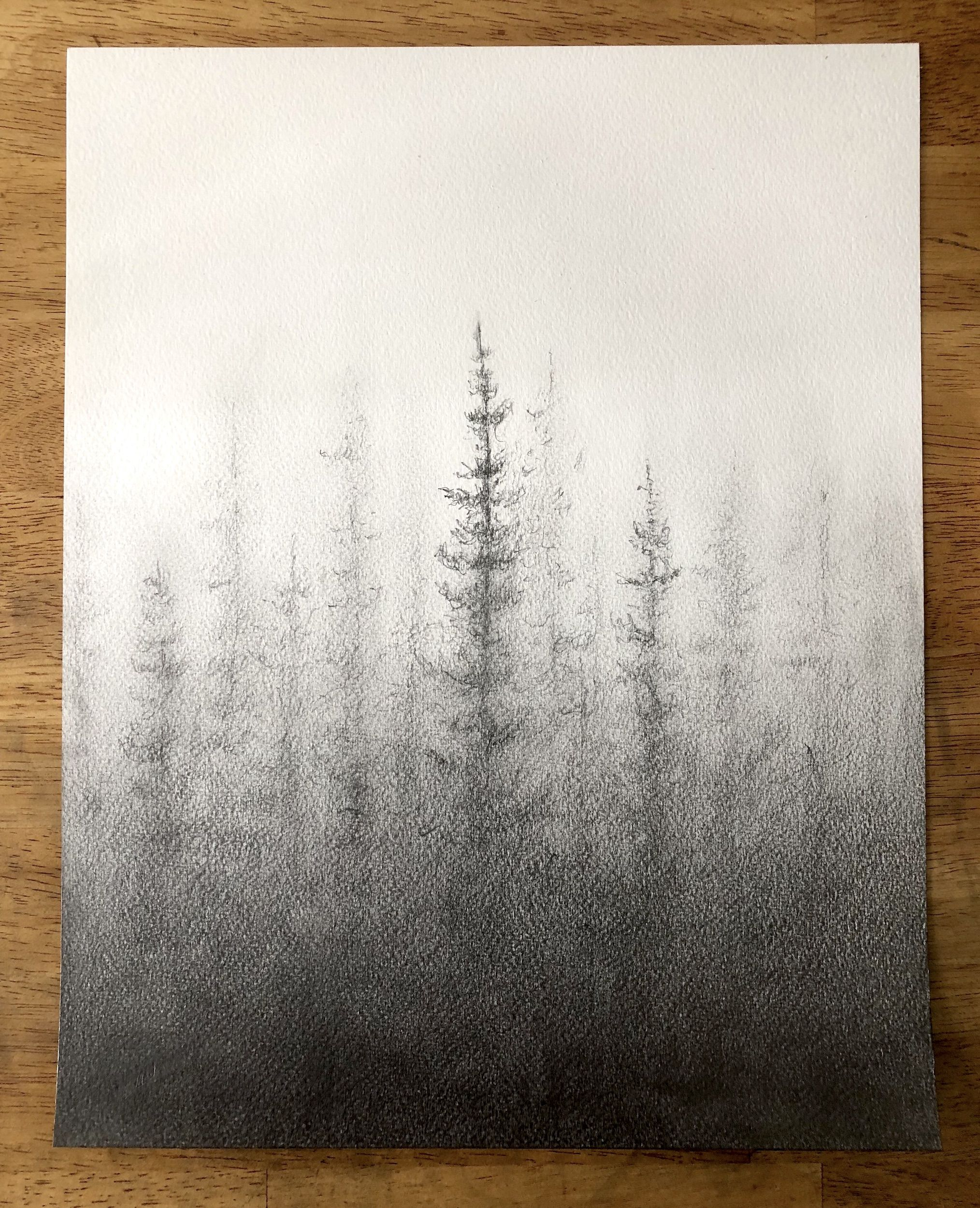 Pine Forest in 2019 | Pencil drawings, Forest drawing ...