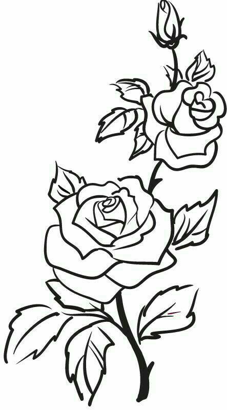 Rosa para tatuagem | ates da tia Suzy | Pinterest | Bordado, Dibujo ...