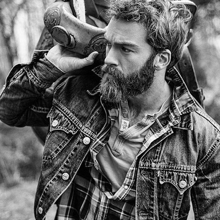 lumberjack plays phil taylor - 736×736