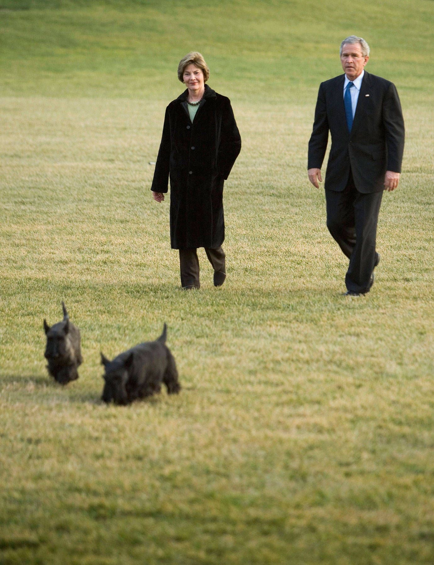 The First Dogs Of The White House Dogs Family Dogs Scottie Dog