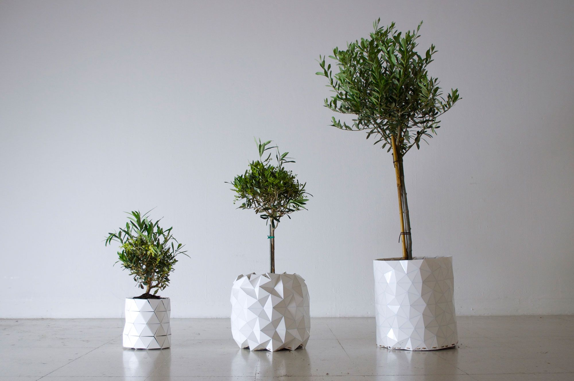 GROWTH, 식물의 성장과 함께 분갈이가 필요없이 스스로 넓어지는 놀라운 화분입니다.   기계적인 것도 아니고, 특별한 재료가 사용된 것도 아닙니다. 이런 기능이 가능한 이유는 화분자체에 '종이접기'의 원리가 적용