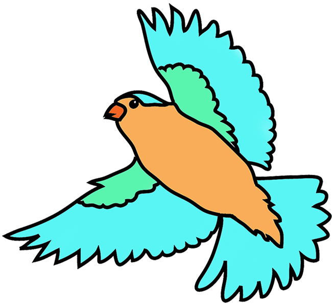 Bird flying. Colorful birds clipart free