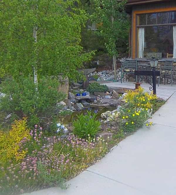 frontyard landscaping curb appeal